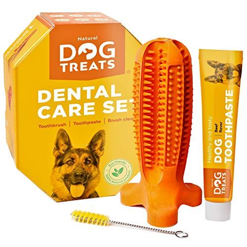 Natural Dog Treats Hundezahnbürste und Zahnpasta mit Rindfleischgeschmack, Hunde Zahnpflege-Set...