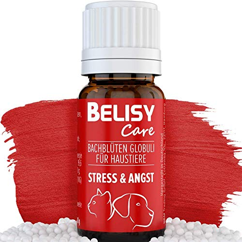 BELISY Angst & Stress Bachblüten Globuli für Hunde & Katzen - Beruhigungsmittel bei Angst & Stress -...