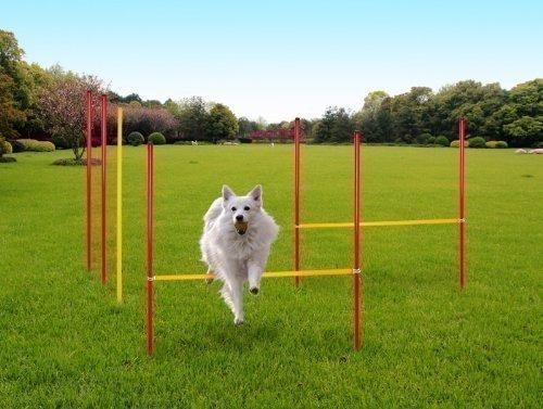 Karry Hunde Agility Set Training Hundesport Hürden Slalom Stangen