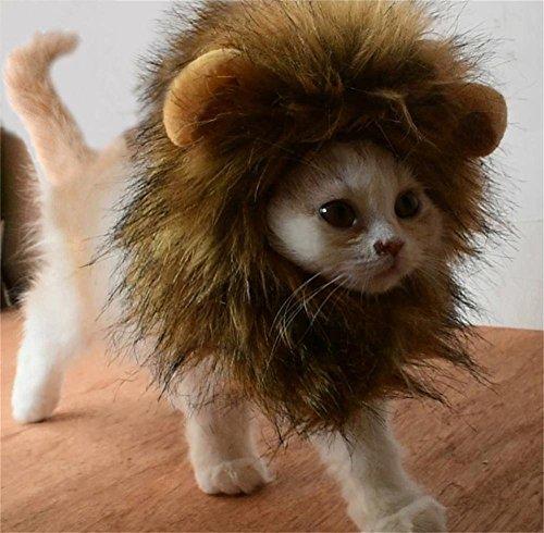 Bello Luna Süße Löwenkostüm, Löwenmähne mit Ohren für Katzen, Kleine Hunde Oder Welpen, für...
