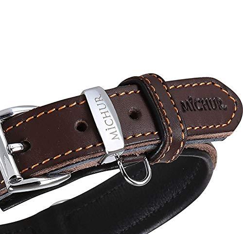 MICHUR Minimo Hundehalsband Leder, Lederhalsband Hund, Halsband, Braun, Leder, in verschiedenen Größen...