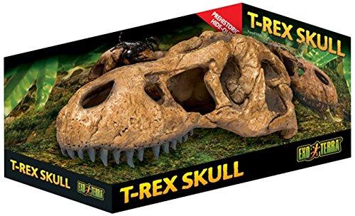 Exo Terra T-Rex-Schädel, sicheres Versteck für Reptilien und Amphibien, groß