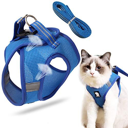 katzengeschirr mit leine,Katzengeschirr,cat harness and leash,katzengeschirr kleine katze,Katzengeschirr...