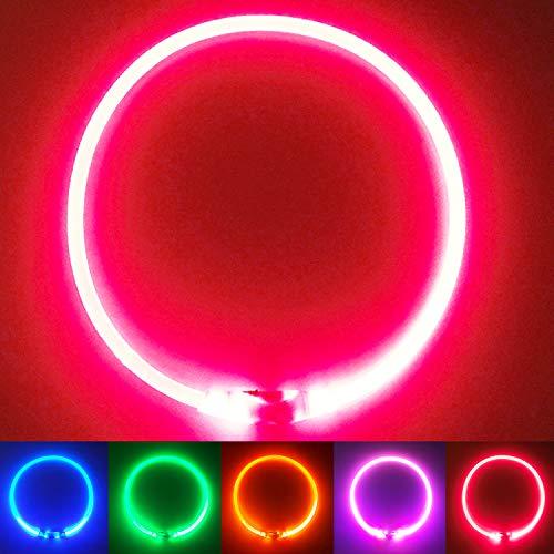 PetSol LED Leuchthalsband für Hunde USB Aufladbar LED Hundehalsband Stück hundehalsband Leuchtend...
