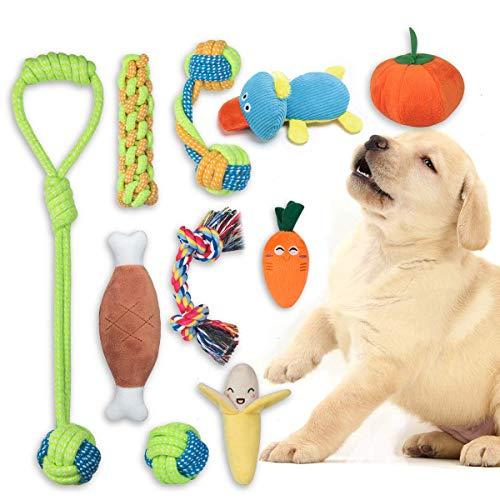 FONPOO Welpenspielzeug eine Kombination aus Fruchtigem Gemüse und Hundeseilspielzeug 10-Teiliges Set...