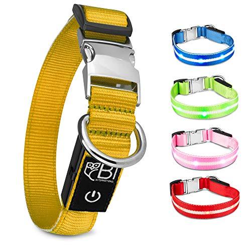 BI International ® Hundehalsband Leuchtend & Aufladbar – Wasserdichtes LED Leucht–Halsband für...