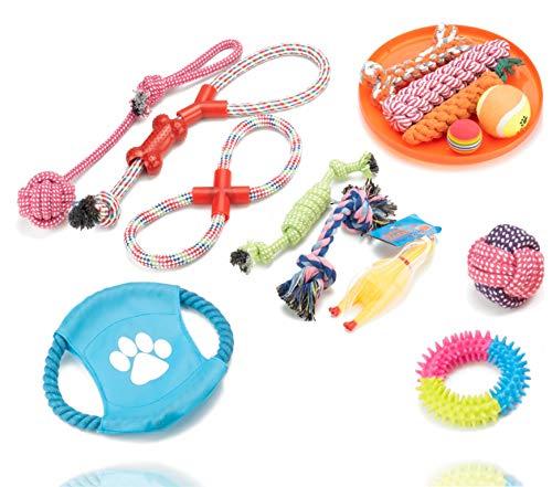 TK Gruppe Timo Klingler 15 TLG. Set Hundespielzeug - Spielzeug für div. Hunderassen/Hunde zur...