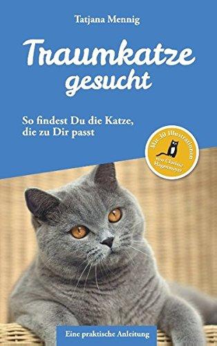 Traumkatze gesucht: So findest Du die Katze, die zu Dir passt