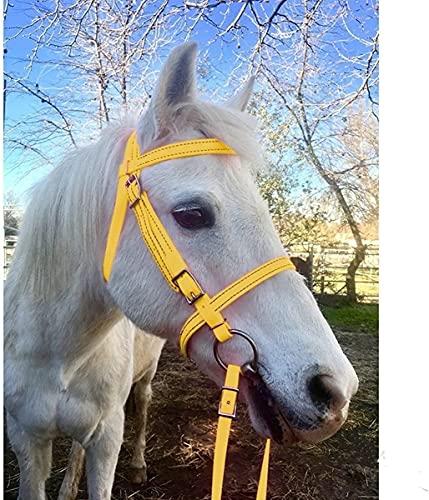 NKTJFUR Reithalfter für Reithalfter, PU, verstellbar, für Pferde, Rennsport, Trainingsseil (Farbe:...