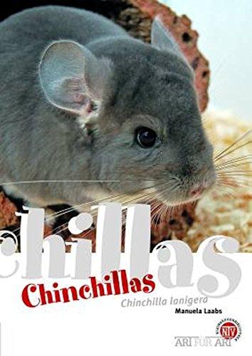 Chinchillas: Chinchilla lanigera (Art für Art / Kleinsäuger)