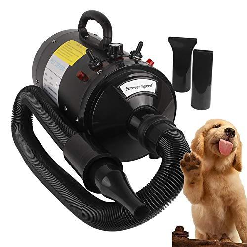 Forever Speed Hundefön Pet Dryer 2400W für Hundepflege Tierfön mit Einstellbarer Windgeschwindigkeit,...