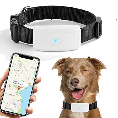 GPS-Tracker für Hunde und Katzen, GPS-Tracker, Echtzeit-Ortung für historische Geräte, wasserdicht,...