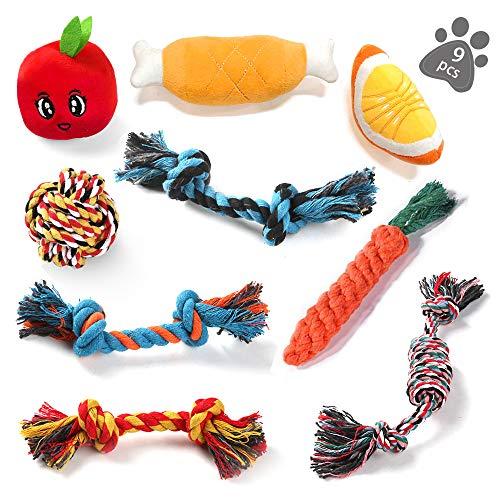 ASANMU Welpenspielzeug Set, 9 Stück Hundespielzeug Welpen Hunde Kauspielzeug Baumwollknoten Spielset...