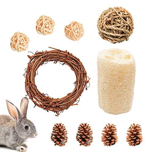 10 Stück Hamster Kauspielzeug Set, Natur Kleintiere Zahnpflege inkl. Grasball Rattenball und -ring,...