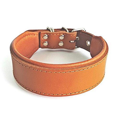 Bestia™ 'Classic Echtleder Hundehalsband. 100% Leder. Weich gepolstert. TOP Qualität!