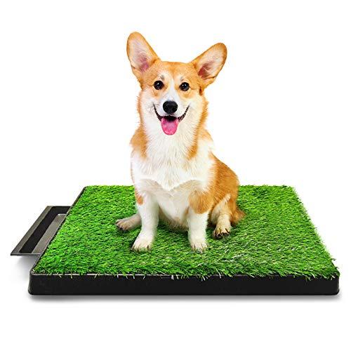Hompet Hundeklo Hundetoilette Welpentoilette Trainingsunterlage, Indoor Hundetöpfchen, Hunde Training...