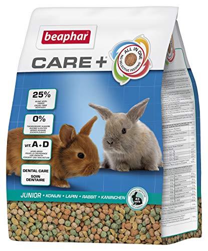 beaphar Care+ Kaninchen Junior | Fördert den gesunden Zahnabrieb | Kaninchenfutter bis zum 10....