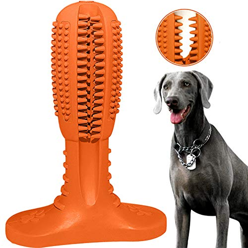 RUCACIO Hundespielzeug für Hunde, Zahnbürste, Zahnpflege, Kauspielzeug, effektive Zahnreinigung,...