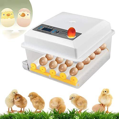 InLoveArts digital Ei-Inkubator 16 Eier Automatischer Brutapparat für den Heimgebrauch,...