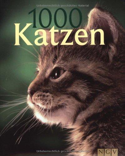 1000 Katzen