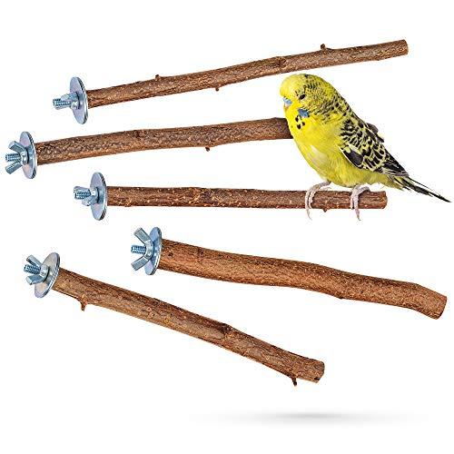 5 herrliche Natur Sitzstangen für Vögel wie Wellensittich, Nymphensittich, Kanarienvogel, Agaporniden |...