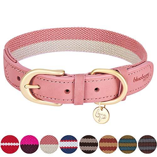 Blueberry Pet Vintage Chic Zweifarbiges Echtleder Hundehalsband in Pink und Grau, L, Hals 46cm-56cm