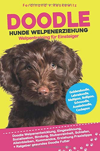Doodle Hunde Welpenerziehung: Goldendoodle, Labradoodle, Maltipoo, Cockapoo & Co - Buch zum Doodle...