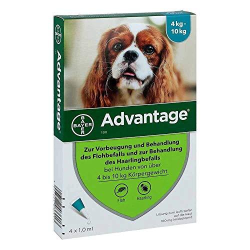 ADVANTAGE 100 Lösung f.Hunde 4-10 kg 4 St