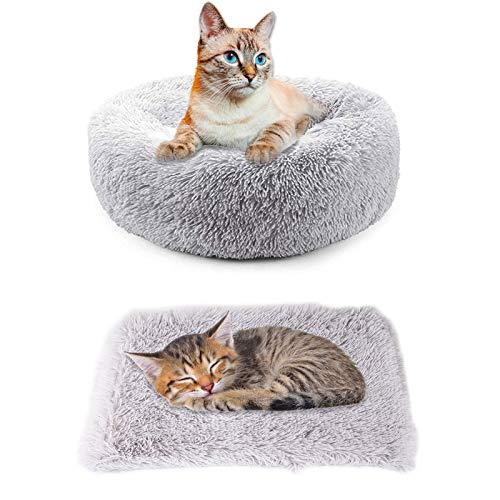 Hundebett Katzenbett + Decken für Hunde 2 PCS Schöne Tierbett Rundes Kissen Plüsch Hunde Betten &...
