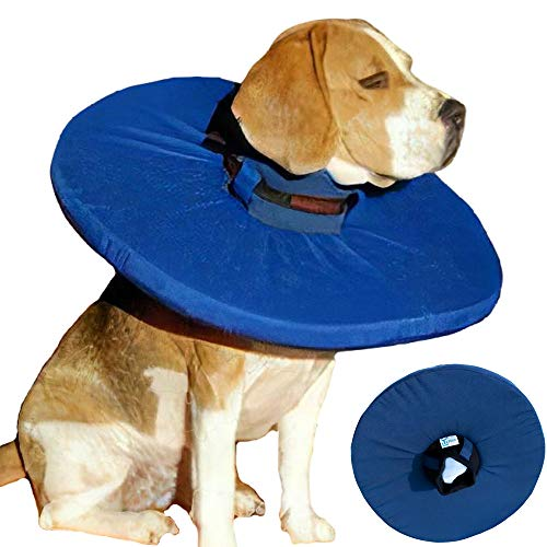 Tepaw Premium Halskrause für Hunde und Katzen (Gr. 2) Made in EU | Kragen geeignet als Leckschutz und...