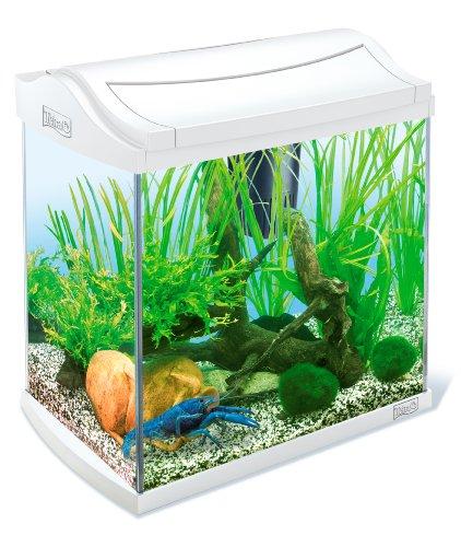 Tetra AquaArt Discovery Line Aquarium-Komplett-Set 30L Weiß