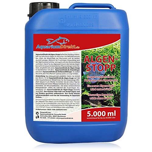 AquariumDirekt Algen-Stopp (GRATIS Lieferung in DE - Flüssiger Algenvernichter, Algenentferner für Ihr...