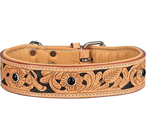 MICHUR Jose Hundehalsband Leder, Lederhalsband Hund, Halsband, Beige, Leder, mit gefärbten Bereichen in...