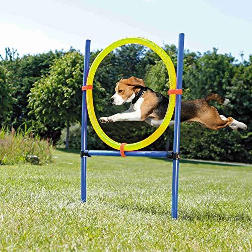 Pet Prime Hundespielzeug für Agility-Training, Agility-Starter-Set, Starter-Set