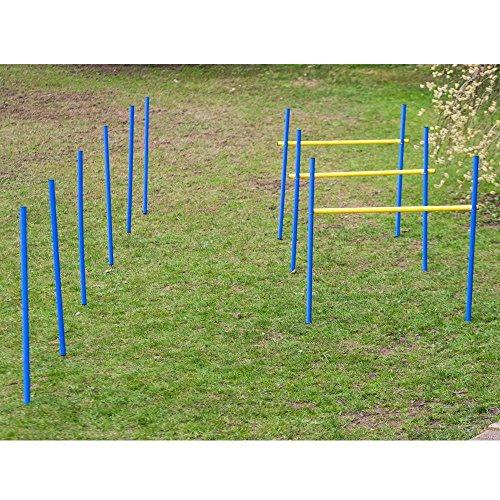 PROCYON Dog Agility Trainings-Set 2 für Anfänger