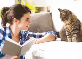 Katze und Frau