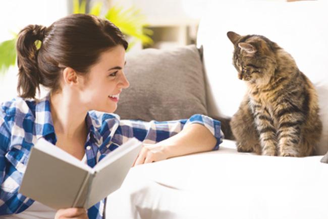 Single frauen mit katzen