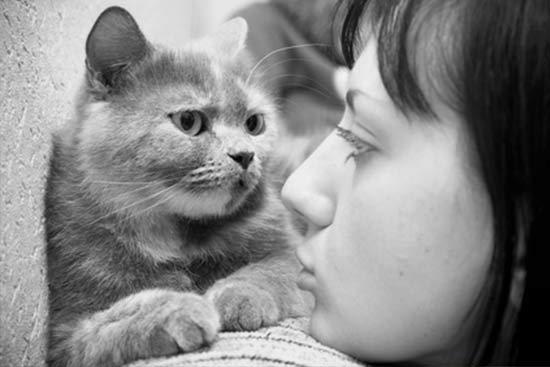 Darf die Katze mit im Bett schlafen? - Tiermagazin Tierischehelden.de