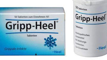 Gripp Heel für Katzen einsetzen – Homöopathisch Erkältung behandeln?