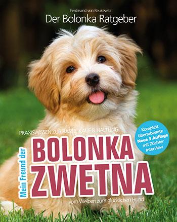 Mein Bolonka Zwetna Tiermagazin Tierischehelden