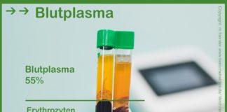 Blutplasma bei der Blutuntersuchung bei Hund, Katze, Pferd