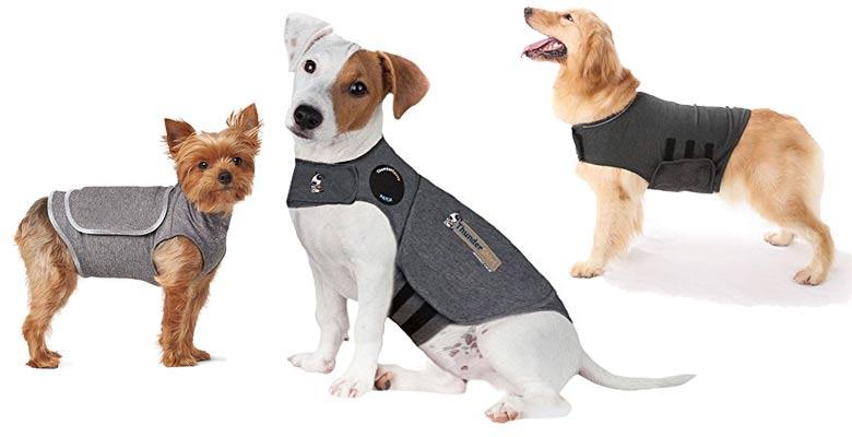 Beruhigungswesten für Hunde