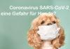 Coronavirus SARS-CoV-2 eine Gefahr für Hunde?