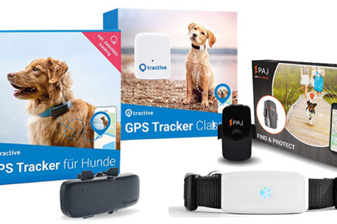 GPS-Tracker Hund