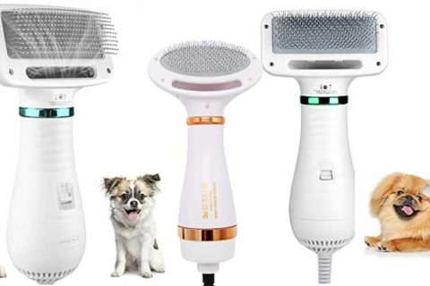 Hunde Haartrockner mit Bürste