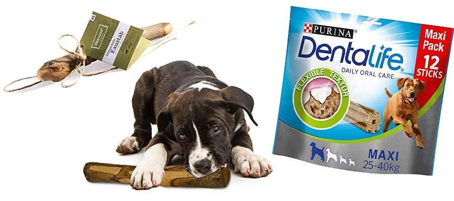 Hunde Zahnpflege-Snacks