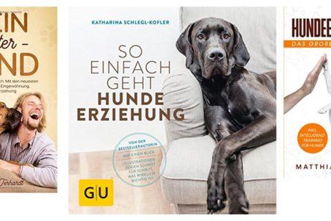 Hundeerziehungs-Buch