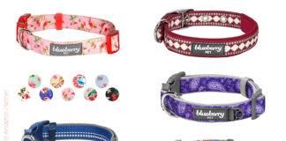 Hundehalsbänder für kleine Hunde