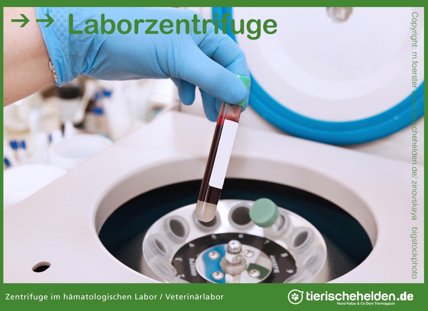 Laborzentrifuge