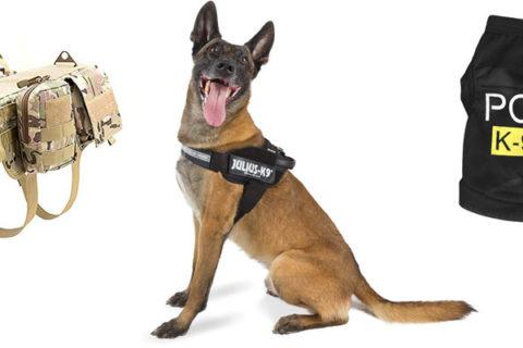 Polizeiweste Hund